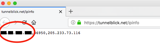 screenshot showing a circled, redacted IP address in a browser window showing the page https://tunnelblick.net/ipinfo